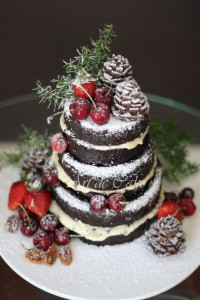 Pinecones chocolate layer cake