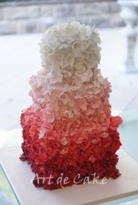 Red Ombre Petal Cake